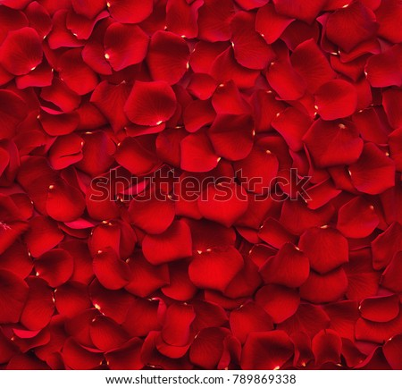 Background of beautiful red rose petals. Top view #789869338