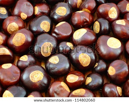 Background of Buckeye nuts