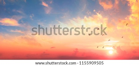 Background of colorful sky concept: Dramatic sunset with twilight color sky and clouds Photo stock ©