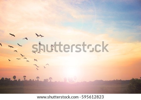 Background of colorful sky concept: Dramatic sunset with twilight color sky and clouds. #595612823