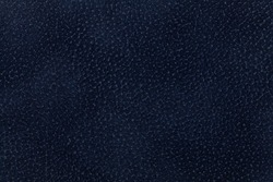 Background of dark blue fabric flock, decorated with a coat of the animal. Lint-free cloth, suede.