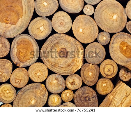 Background of dry teak  logs stacked up on top of each other in a pile