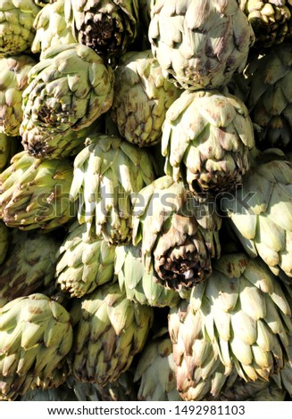 background of fresh green artichokes freshly picked for sale at the greengrocer #1492981103