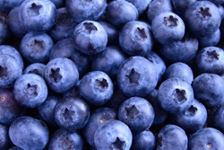 Background of Fresh Ripe Sweet Blueberries