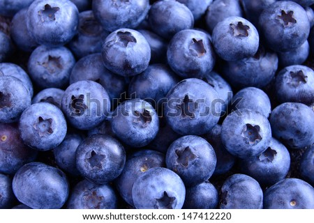Background of Fresh Ripe Sweet Blueberries #147412220