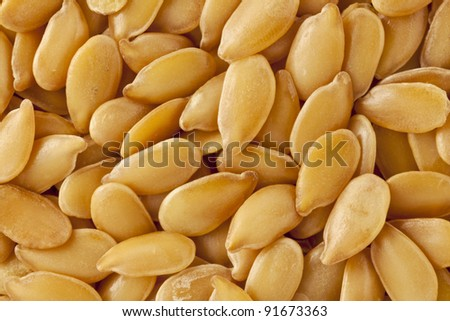 background of golden flax  seeds, two times life-size magnification
