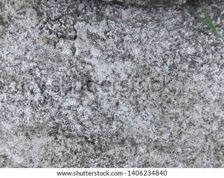 Background of gray-brown cement with cracks and pores. #1406234840
