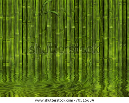 Background of green bamboo forest in the water