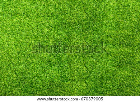 Background of green grass. The texture of the football field. Texture green lawn - Shutterstock ID 670379005