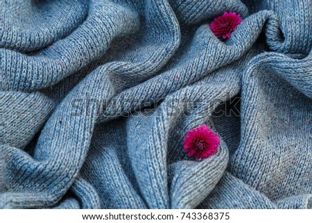 background of knitted gray linen of goat's wool made with knitting needles or on a knitting machine laid in big waves with  red chrysanthemum flower. #743368375