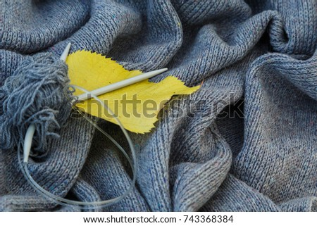 background of knitted gray linen of goat's wool made with knitting needles or on a knitting machine laid in waves with metal knitting needles, yellow aspen leaf and red chrysanthemum flower. #743368384