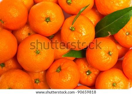 Background of mandarin - stock photo