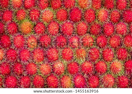 Background of Rambutan sweet delicious fruit from Thailand, The Rambuntan has a red shell with long green fur covering the whole effect the ripe fruit has a red. This rambutan is a Healthy fruits. #1455163916