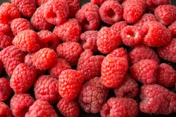 Background of raspberries. Fresh raspberries closeup. Top view. Background of red berries. Various fresh summer fruits. Red raspberries. Red food.