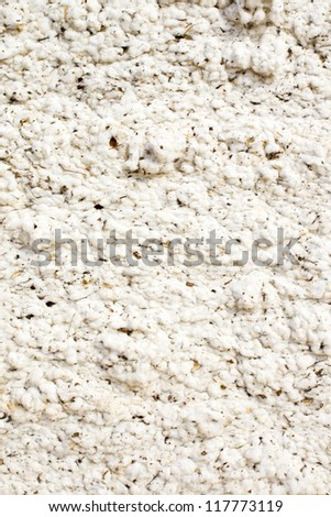 Background of raw cotton