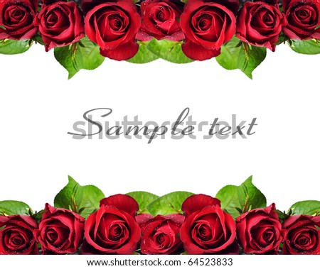 Background of red roses