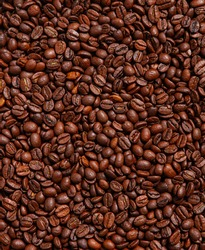 Background of roasted brown coffee beans, whole grains for making drinks, contains caffeine. Stylish textured wallpaper