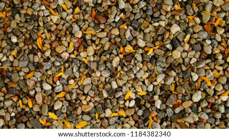 Background of small stones and small leaves                               #1184382340