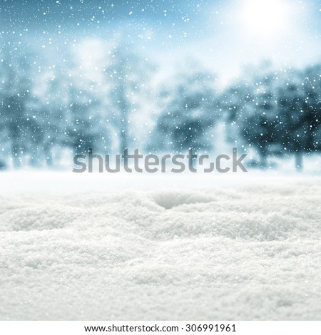 background of snow and trees  #306991961