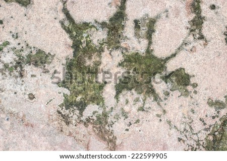 Background of stone wall texture,Cement background,old cement