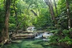 Background of streaming waterfall. small waterfall in Thailand. deep forest brook has green jungle from big tree.The forest protected by forester all time. rainforest cover by bright green moss.