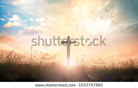 Photo of  Background of thanks giving concept: Silhouette cross and birds flying on meadow autumn sunrise