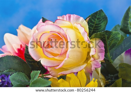 background of various colorful flowers