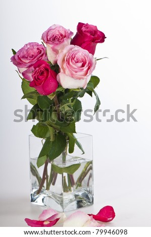 Background of White with Bouquet of Roses and Ribbon - stock photo