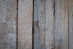 Background of wooden boards with a bough