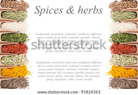 Background of wooden shovels with different spices scattered from them