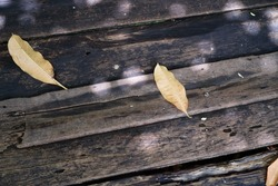 Background of yellow leaf fallen on the wooden   sidewalk in the sunshade