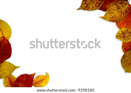 Background or border pattern composed of fall leaves.