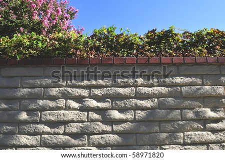 Background or texture: Brick garden wall with shrubbery, pink blossoms and clear blue sky