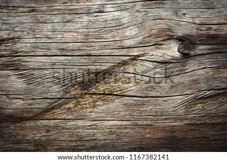background or texture Detail of wooden tree trunk with grooves