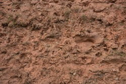 Background or Texture of Wet Sticky Red Clay Mud on a Woodland Track in a Forest in Rural Devon, England, UK