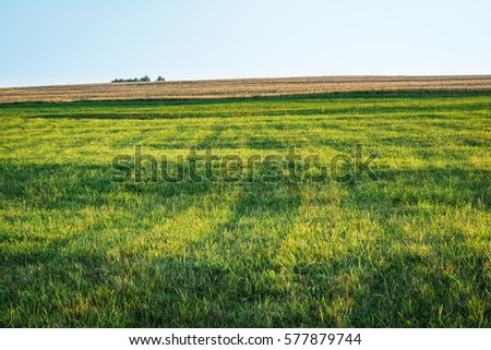 Background photography of bright lush grass field and blue sunny sky. Outdoor countryside meadow nature. Rural pasture landscape with plain green grass. Farm landscape background with green grass lawn - Shutterstock ID 577879744
