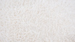 Background picture of a soft fur white carpet. wool sheep fleece closeup texture background. Fake color beige fur fabric. top view.