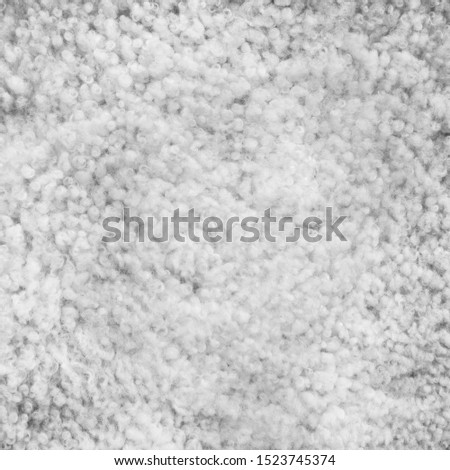 Background picture of a soft fur white carpet. Wool sheep fleece closeup texture background. Top view.