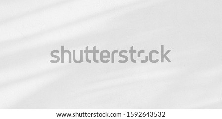 Background shadow and Nature shadows.Gray shadows trees leaf on white wall. Abstract shadows nature concept blurred background.White and Black.Texture shadows
