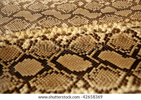 Background snake skin pattern brown and beige color