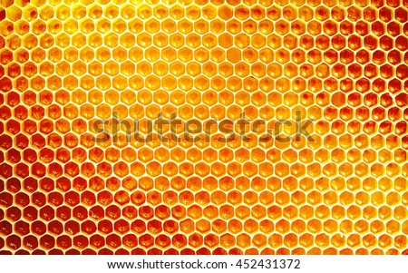 Background texture and pattern of a section of wax honeycomb from a bee hive filled with golden honey in a full frame view - Shutterstock ID 452431372