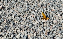 background texture-close up of two small golden autumn leaves in a mound of gravel with copy space