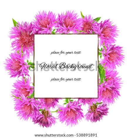 background texture made of pink cornflower and place for text #538891891