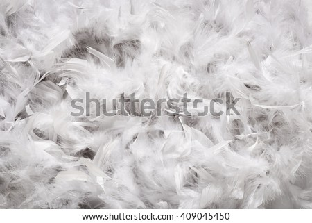 Background texture of a thick layer of soft white down feathers, probably from a duck or goose, viewed full frame from above