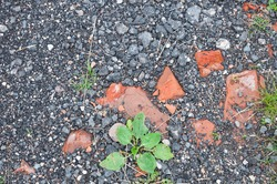 Background texture of asphalt crumbs with small stones, grass and bricks