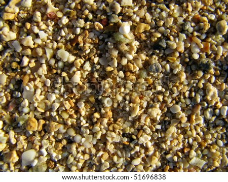 Background texture of coral and pebbles on a beach