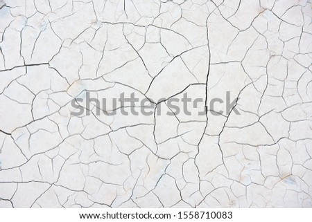 Background texture of cracked compacted marble powder showing an abstract tracery pattern of cracks in a Carrara Mine in Italy #1558710083