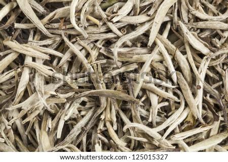 background texture of organic silver needle white tea #125015327