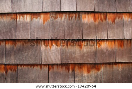 Background texture of wooden cedar shingles