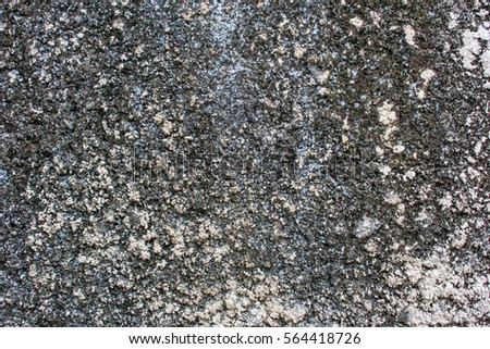 Background texture old cement pavement. #564418726